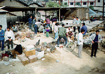 Stone market in China